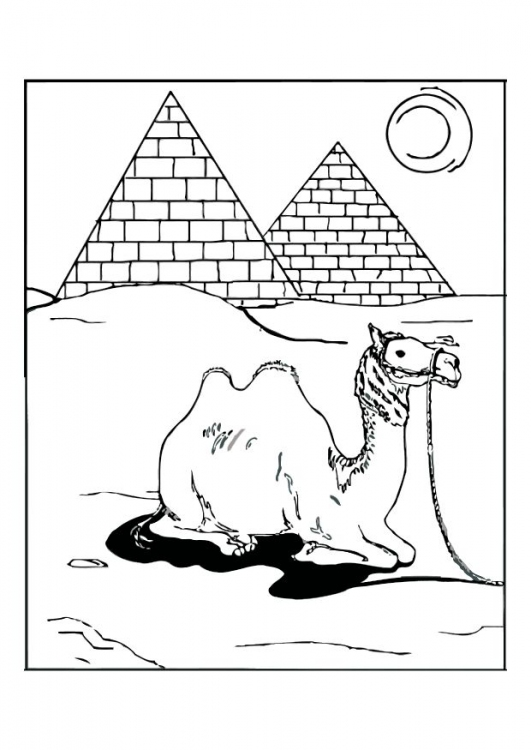 Passover Coloring Page Goldenthal Family Blog